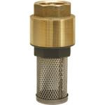 Válvula Fundo Poço c/Filtro Inox